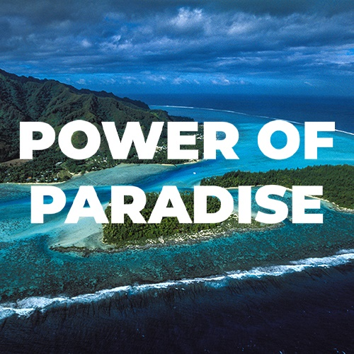 Noni by NewAge och Power of Paradise article image
