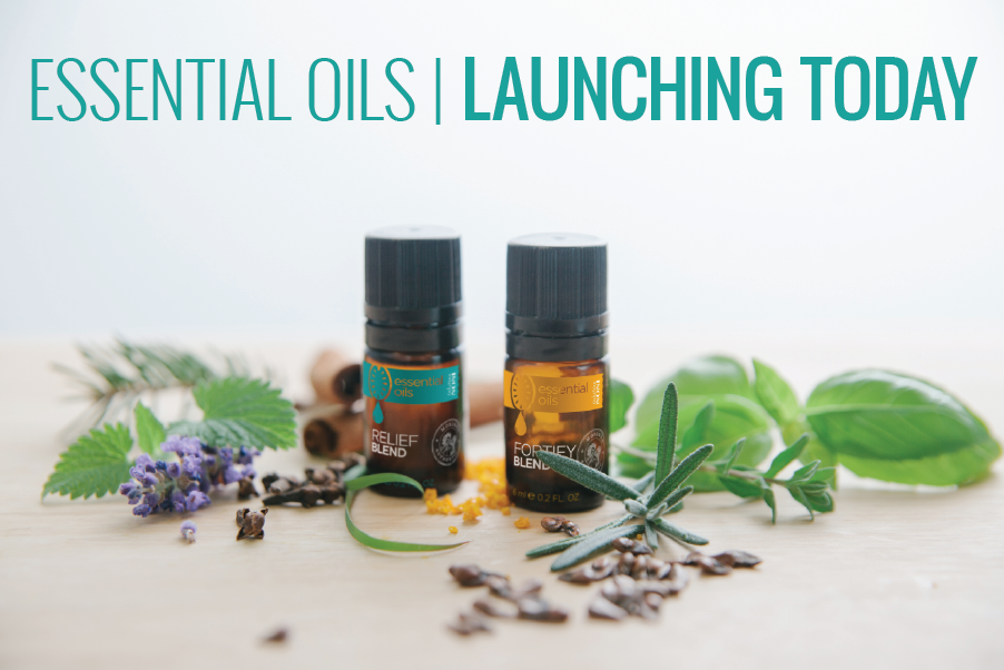 Essential oils launching today