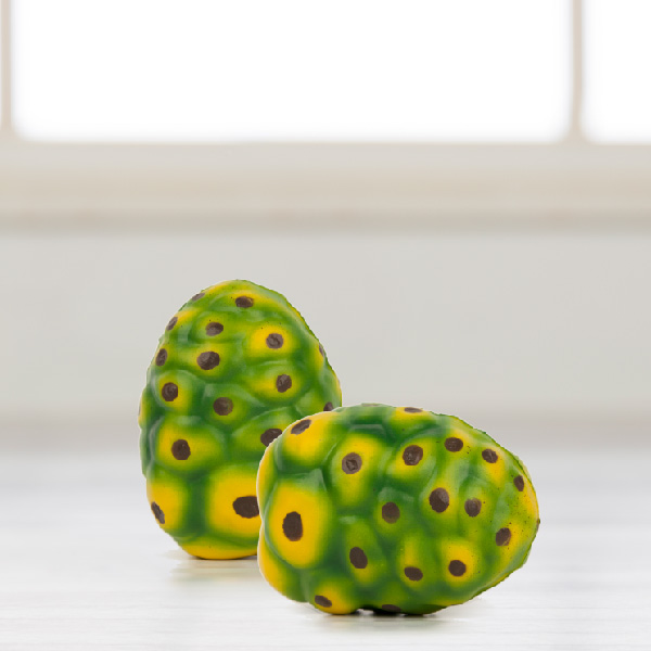 Noni Fruit Squeeze Toy Photo